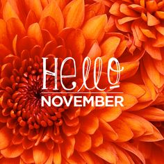 May all of you have a Beautiful November.  May it be full of blessings, break throughs, drawing closer to Jesus, turning from the old  and embracing the new, repentance and redemption.  May his grace and love flood your heart. Hugs to you all. Message by Sylvia Alvarado