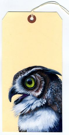 Painting: Long Horned Owl on manila tag  / Gouache / by Olivia Warnecke / 2013  itsolivia.com