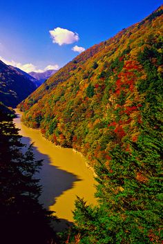 Autumn color near Midano Dam, on the road to Kamikochi, the Japan Alps, Nagano Prefecture, Japan Beautiful World, Beautiful Places, Kamikochi, Nagano Japan, Autumn Scenes, Solo Travel, Asia Travel, Nature Pictures, Wonders Of The World
