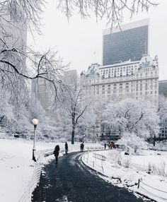 in Central Park - New York ✨❄️❄️❄️✨ Picture by ✨✨Jeff. - Winter in Central Park – New York ✨❄️❄️❄️✨ Picture by ✨✨Jeff Silberman✨✨ -Winter in Central Park - New York ✨❄️❄️❄️✨ Picture by ✨✨Jeff. - Winter in Central Park – Ne. New York Winter, Winter Szenen, Winter Time, Winter Magic, Central Park New York, New York Noel, New York Weihnachten, Wonderful Places, Beautiful Places
