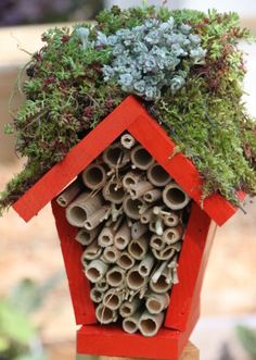 Make a Lady Bug Hotel : HGTVGardens