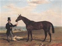 Fisherman a bay racehorse held by his trainer by Harry Hall
