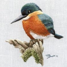 Embroidery Patterns Online past Embroidery Stitches Split Stitch Crewel Embroidery Kits, Embroidery Needles, Hand Embroidery Patterns, Ribbon Embroidery, Cross Stitch Embroidery, Embroidery Designs, Pdf Patterns, Embroidered Bird, Thread Painting