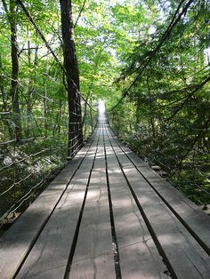 Cane Creek Swinging Bridge (Fall Creek Falls State Park)