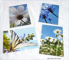 Lot de 4 cartes postales 10x14cm Papillon et fleurs réalisées avec les photos de Céline Photos Art Nature : Cartes par celinephotosartnature Celine, Art Et Nature, Photo Art, Polaroid Film, Photos, Etsy, Packaging, Handmade Gifts, Butterflies