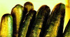 3.προστατευτικά γάντια για οξύδωση τσίγκου (protection gloves for engraving)