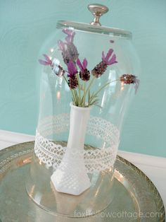 Fox Hollow Cottage Too: Turn a Vase into a Cloche with Plaid's Martha Stewart glass paint