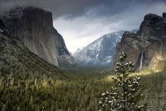 Art Wolfe Premium Thick-Wrap Canvas Wall Art Print entitled Yosemite, None Canvas Art Prints, Canvas Wall Art, Framed Prints, Big Canvas, California National Parks, Mural Wall Art, Poster Prints, Landscape, Mountain Art
