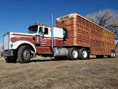 Farm Trucks, Big Rig Trucks, Tow Truck, Semi Trucks, Cool Trucks, Freightliner Trucks, Peterbilt, Suzuki Sv 650, Livestock Trailers