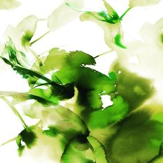 "Petra Dufkova on Instagram: ""Run of the River #illustration #botanical #perfume #fragrances #design #packagedesign #handpainted #watercolor #exclusivedesign #green…"" Watercolor Face, Petra, Fragrances, Packaging Design, Sketches, Perfume, Hand Painted, River, Illustration"