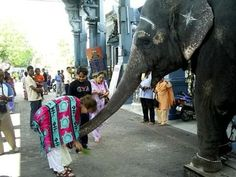 Outside the Vinayakan Temple (Lord Ganesha temple) in Pondicherry... one of the scenes in our film script