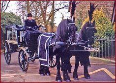 victorian horse drawn hearse