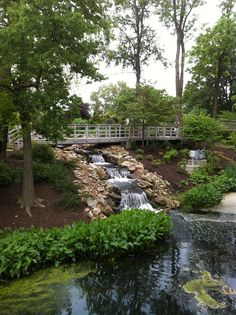 Waterfall At Grayson Lake Ky Customer 39 S Countries Pinterest Lakes Kentucky And Beautiful