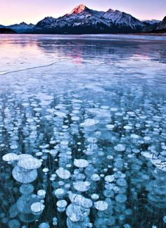 This lake has the coolest ice bubbles! Oh, Canada...