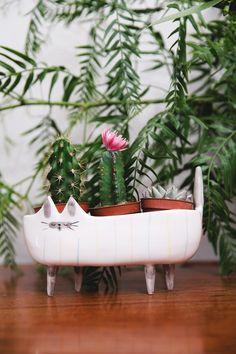 Cat Plant Pot.