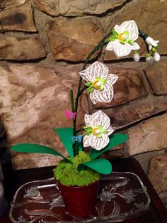 Paper quilling orchids