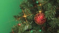How to Have a Green Christmas