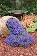 garden idea - flowers spilling out of pot
