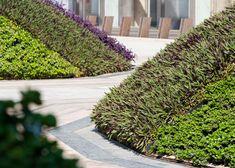Abu Dhabi plaza by Martha Schwartz features teardrop-shaped landscape