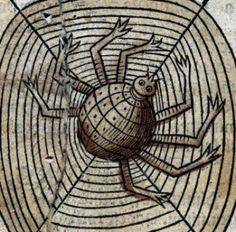 Woodcut of a spider by Arnaldus de Villanova, 1491