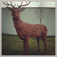 how to make a willow reindeer - Google Search