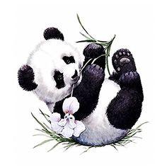 Baby panda bears, baby animals, animals and pets, cute animals, cute Niedlicher Panda, Panda Bebe, Panda Art, Panda Wallpapers, Cute Wallpapers, Cute Animal Drawings, Cute Drawings, Cute Panda Drawing, Image Panda