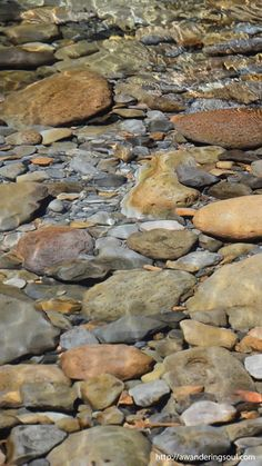 animated pebbles river