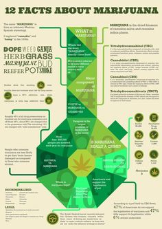 Interesting facts about marijuana and cannabis