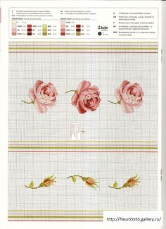 Belles roses  3 de 5