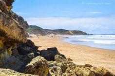 Jan Juc Victoria - Australia  #janjuc #beached#dogwalker #beach#surf#torquay#landscapephotography#beachlovers#love#freedom#run#running#runonthebeach#photographer#nikonowner#photography#composition#perspective#photographer#bluesky#blueskies#walking#bestbeaches#travel#travelaustralia#exploreaustralia#traveler#love#australiagram#tbt#holidays#surfbreaks#tbt by capturimaging http://ift.tt/1X8VXis