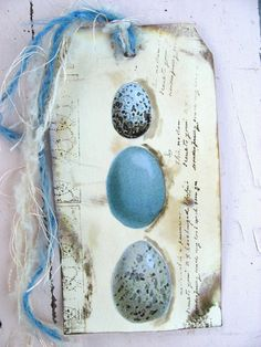 Blue egg tag