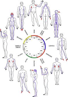 Meridian Acupuncture, Acupuncture Points, Acupressure Points, 7 Chakras Meditation, Qigong Meditation, Massage Corps, Ear Reflexology, Cute Relationship Texts, Trigger Point Therapy