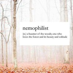 nemophilist: a haunter of the woods; one who loves the forest and its beauty and solitude Unusual Words, Rare Words, Unique Words, New Words, Cool Words, Powerful Words, Pretty Words, Beautiful Words, Aesthetic Words