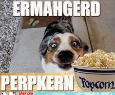 ERMAHGERD! This is totally my expression when there is popcorn in my vicinity!