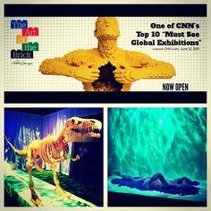 The Art of The Brick exhibition is now open! #LEGO #Art #Sculpture #Artofthebrick #discoveryts @Nathan Mallonee Sawaya