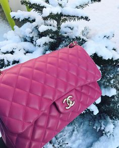 "1,343 Likes, 54 Comments - 🎀Gorgeous_Daily_Dose🎀 (@gorgeous_daily_dose) on Instagram: ""My snow angel ❄️❄️❄️ #chanel #chanelbag #chanellover #chaneladdict #chanelparis #chanelclassic…"""