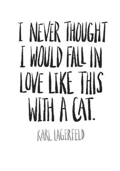 To fall in love like this with a cat. Karl Lagerfeld l #quotes