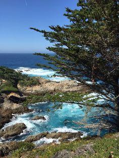 Point Lobos , Carmel .... Just beautiful