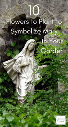 If you're planning on creating a Marian Garden (a garden dedicated to the Virgin Mary or a dedicated meditation spot) then check this out! It lists all the flowers that symbolically represent Mary. Perfect for Catholic families, Catholic moms and Catholic Prayer Garden, Meditation Garden, Marian Garden, Sacred Garden, Spiritual Garden, Spiritual Life, Virgin Mary Statue, Blessed Mother Mary, Dream Garden
