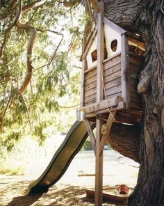 Tree House for-the-home