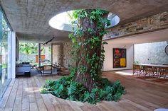 Tons da Arquitetura | Design Urbanismo Restauro | São Paulo | Arquitetura integrada com Árvores