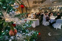 Reception room at Carton House with Christmas tree and guests Hotel Reception, Reception Rooms, Christmas Wedding, Christmas Tree, Wedding Details, Wedding Photos, Table Decorations, Holiday Decor, House
