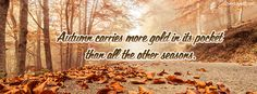 Autum Carries More Gold Facebook Cover coverlayout.com