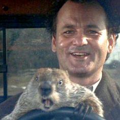 Groundhog Day Movie Toaster