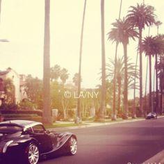 #cars #vintage #beverlyhills #palmtrees  #verveofla™