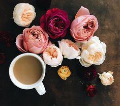 #coffeeandseasons • Instagram photos and videos