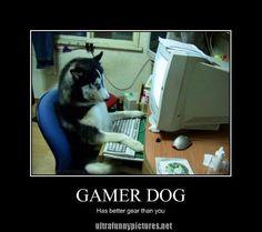 Gamer Dog~~Always :-p