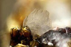 Messelite avec Jahnsite-(NaFeMg). Tip Top Mine, Fourmile, Custer Distrikt, Custer Co., South Dakota, USA FOV=4 mm Photo Stephan Wolfsried
