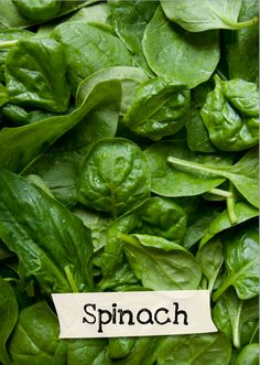 Want to learn more about spinach? Sign up for Jamie Oliver's Kitchen Garden Project at http://www.jamieskitchengarden.org/!