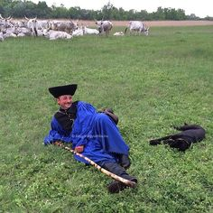 #work #mik #foto #photo #folk #tradition #agriculture #heritage #mik #Hortobágy #Alföld #Hungary #dog #shepard #cattle #livestock